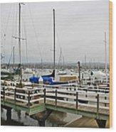 Newport Bay And Balboa Island Wood Print