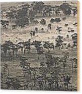 Ngorongoro Crater, Tanzania, Africa Wood Print by Carson Ganci