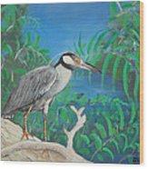 Night Heron Wood Print