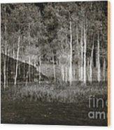 Night Magic II Wood Print