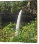 North Falls Canyon Wood Print