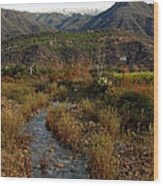 Ojai Valley Wood Print