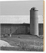 Old Barn And Silo Wood Print