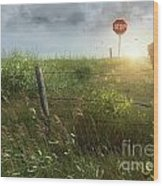 Old Country Fence On The Prairies Wood Print by Sandra Cunningham