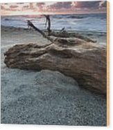 Old Tree Trunk On A Beach  Wood Print
