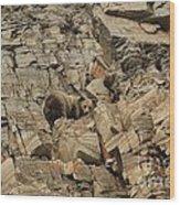 On The Edge Of Glory Wood Print