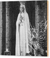 Our Lady Of Fatima Wood Print