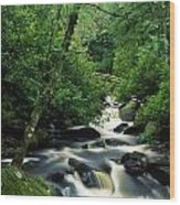Owengarriff River, Killarney National Wood Print