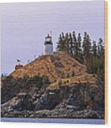 Owls Head Lighthouse Wood Print by Skip Willits