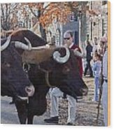 Oxen And Handler Wood Print