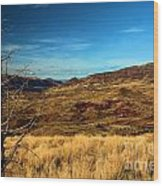 Painted Hills Landscape Wood Print