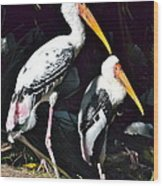Painted Storks Wood Print