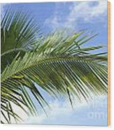 Palm  Wood Print by Blink Images