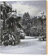 Palm Trees With Snow Wood Print