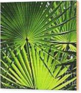 Palmettos Wood Print