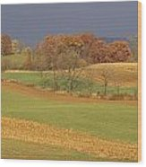 Pastoral View Of Rolling Fields Wood Print