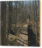 Path Into The Woods Wood Print