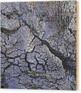 Peat Bog Wood Print