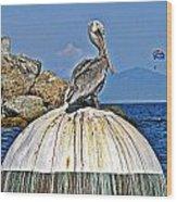 Pelican Power Wood Print