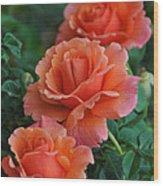 Perfectly Peach Wood Print