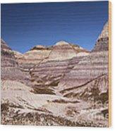 Petrified Forest Blue Mesa Wood Print