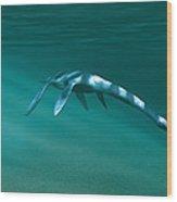 Plesiosaur Wood Print