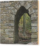 Poinsett Bridge With Gothic Arch Of Stone Wood Print