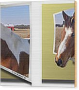 Pony Pose - Gently Cross Your Eyes And Focus On The Middle Image Wood Print