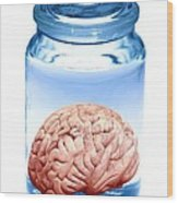 Preserved Brain, Artwork Wood Print