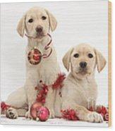Puppies At Christmas Wood Print