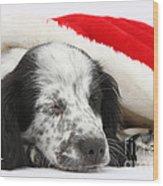 Puppy Sleeping In Christmas Hat Wood Print