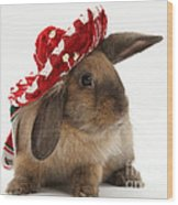 Rabbit Wearing A Hat Wood Print