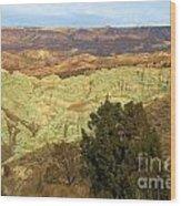 Rainbow Canyon Wood Print