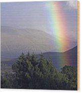Rainbow Wood Print
