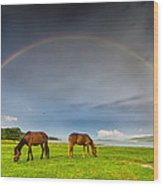Rainbow Horses Wood Print by Evgeni Dinev