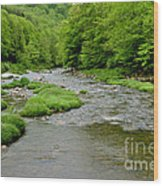 Rainy Day On Williams River Wood Print