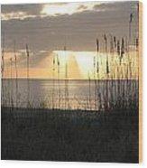 Rays Of Hope Wood Print