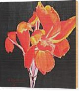 Red Canna Wood Print