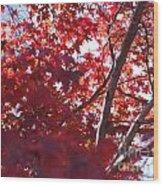Red Leaves 2 Wood Print