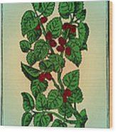 Red Mulberry Wood Print