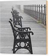 Redcar, North Yorkshire, England Row Of Wood Print by John Short