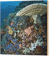 Reef Scene With Corals And Fish Wood Print