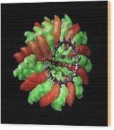Ribgrass Mosaic Virus, Computer Model Wood Print