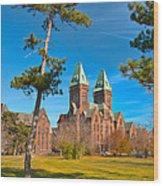 Richardson Building 3421 Wood Print