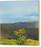 Rinca Panorama Wood Print