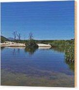 River Namaqualand Wood Print