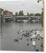 River Thames At Windsor Wood Print