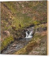 River Wye Wood Print