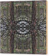 Roan Fantasy Wood Print