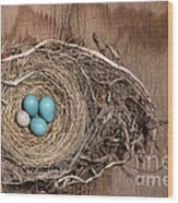 Robins Nest And Cowbird Egg Wood Print
